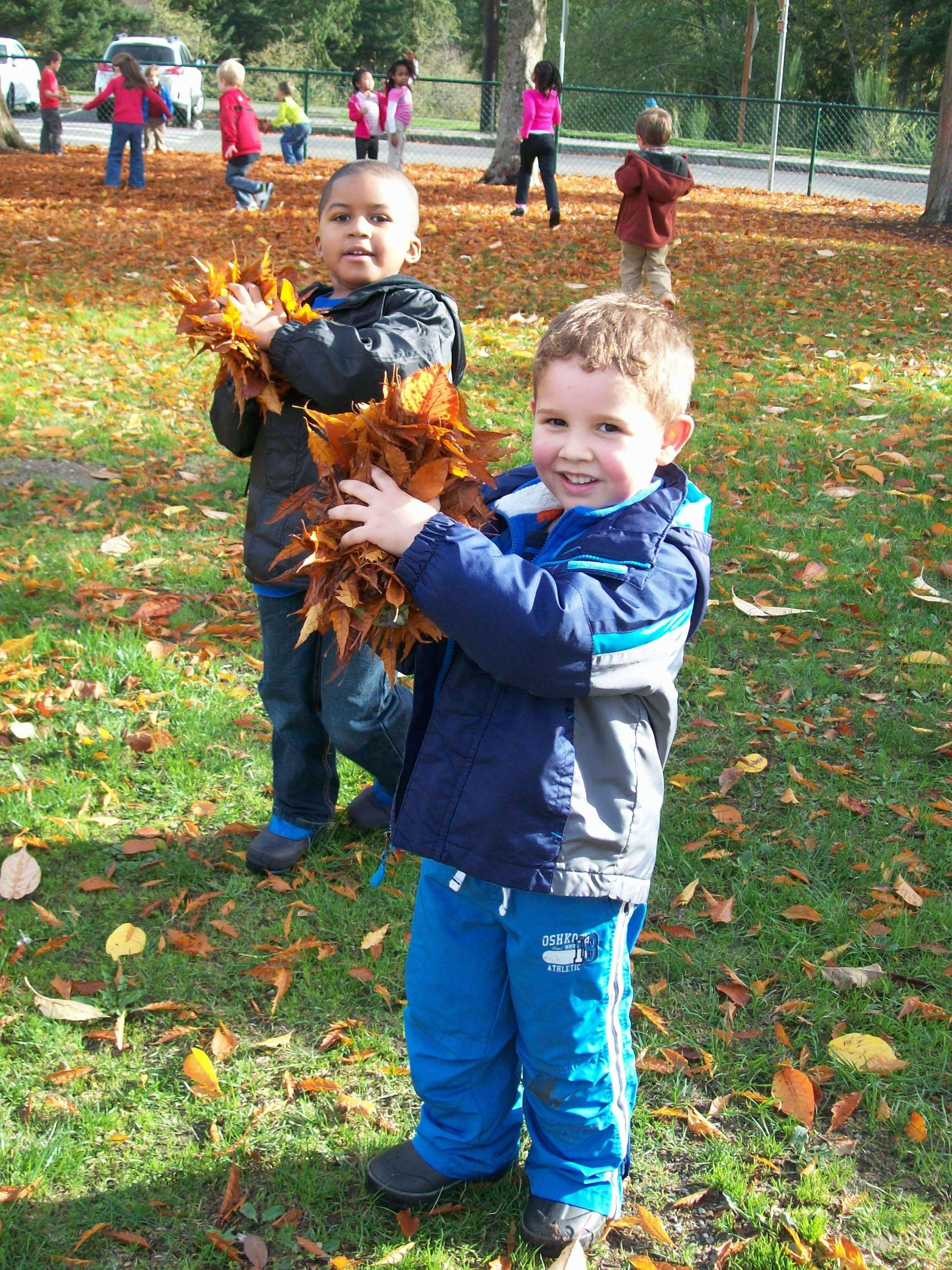 Preschool Aged Child Playing in Fall Leaves